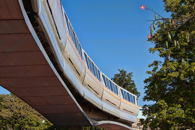 Posted:  Epcot, old TP POTD, Monorail, Best Photos of WDW, Ride