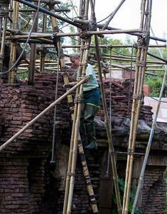 Animal Kingdom Monkey House