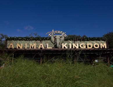 Animak Kingdom Entrance