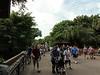 Disney 2010-16