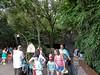 Disney 2010-20