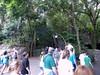 Disney 2010-17
