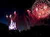 2016_Disney_B-0126