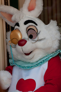 Disneyland April 2010 (30 of 46)