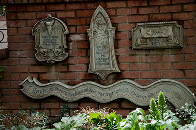 Disneyland April 2010 (8 of 46)