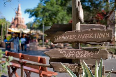 Disneyland April 2010 (33 of 72)