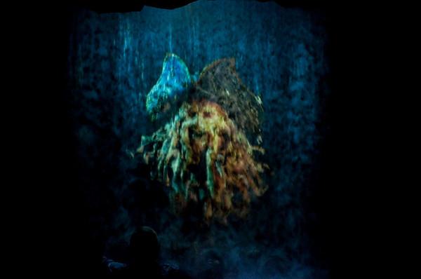 Disneyland May 31 2009