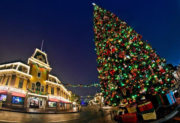 <b>Disneyland Resort Disneyland (park) Main Street, USA</b>  The Disneyland Christmas tree towers over the Emporium on Main Street.   For more tips, information, and photos of Disneyland, visit my blog: http://www.disneytouristblog.com/