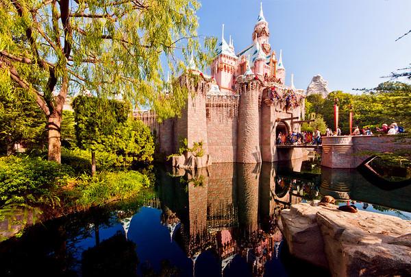 <b>Disneyland Resort Disneyland (park) Sleeping Beauty's Winter Castle</b>  A reflection of Sleeping Beauty Castle during the Christmas season. Notice the two ducks?  For more tips, information, and photos of Disneyland, visit my blog: http://www.disneytouristblog.com/