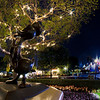 "<b>Disneyland Resort Disneyland (park) Sleeping Beauty's Winter Castle</b>  Donald Duck shows off one of the ""fancy"" twinkle trees in front of Sleeping Beauty Castle.   For more tips, information, and photos of Disneyland, visit my blog: http://www.disneytouristblog.com/"