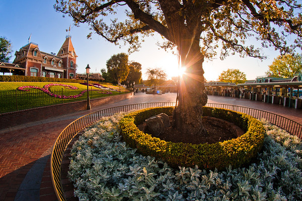 """Sunrise over the Disneyland Main Street, USA Train Station at the end of """"One More Disney Day.""""<br /> <br /> Read/view our One More Disney Day trip report: <a href=""""http://www.disneytouristblog.com/one-more-disney-day-disneyland-trip-report/"""">http://www.disneytouristblog.com/one-more-disney-day-disneyland-trip-report/</a>"""