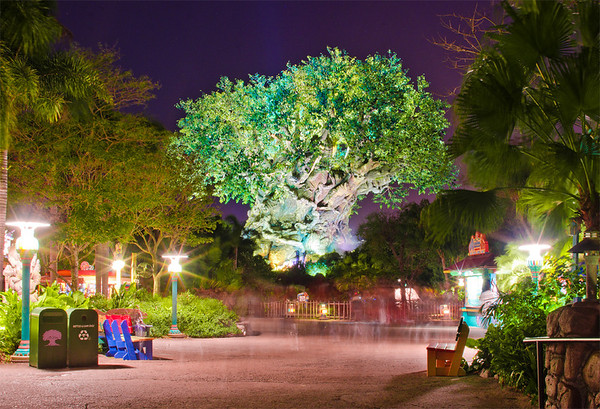 Tree of Life at Disney's Animal Kingdom. Who loves this icon?
