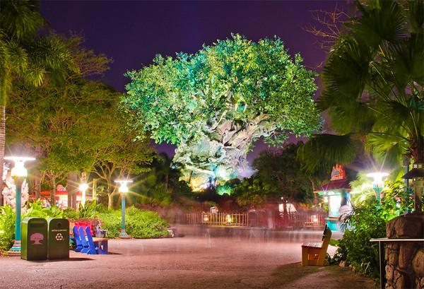 Tree of Life at Disney's Animal Kingdom. Who loves this icon?