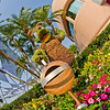 """Anyone else ready for it to be spring? <br /> <br /> Nothing says """"spring"""" like the Epcot Flower & Garden Festival: <a href=""""http://www.disneytouristblog.com/epcot-flower-garden-festival-photos/"""">http://www.disneytouristblog.com/epcot-flower-garden-festival-photos/</a>"""