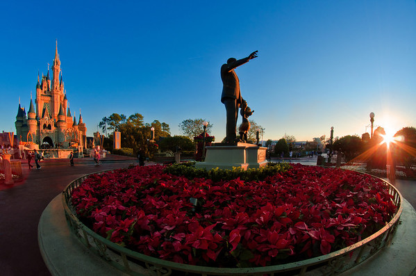 The sunrise over Partners and Cinderella Castle...the perfect way to start out a day at Walt Disney World!