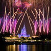 "Cakes are nice, but if I could have one thing every year ""in honor of"" my birthday, it would be fireworks. What would you want? <br /> <br /> Tips for Celebrating at WDW: <a href=""http://www.disneytouristblog.com/celebrating-disney-world/"">http://www.disneytouristblog.com/celebrating-disney-world/</a>"