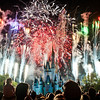 """Tips for Visiting Walt Disney World WITH KIDS...by Non-Parents: <a href=""""http://www.disneytouristblog.com/disney-world-kids-tips/"""">http://www.disneytouristblog.com/disney-world-kids-tips/</a>"""