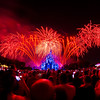 "Special version of ""Wishes!"" for Walt Disney World's 40th Anniversary. The 30th Anniversary of the Disney-MGM Studios is this year...anyone expecting anything? <br /> <br /> More photos from WDW's 40th: <a href=""http://www.disneytouristblog.com/disney-world-40th-anniversary-recap-photos-video/"">http://www.disneytouristblog.com/disney-world-40th-anniversary-recap-photos-video/</a>"