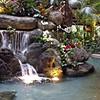 Posted: Poly Pics, Resort POTD,