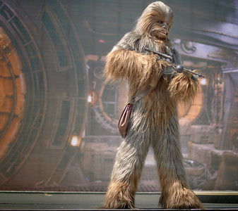 I Like That Wookiee