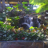 iPhone picture of one of the waterfalls inside the Polynesian Hotel in DisneyWorld.