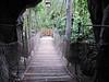 Bridge in Discovery Island