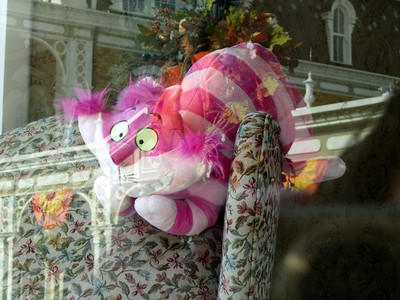 Stuffed Cheshire Cat in a window on Main Street