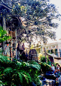 Edited Swiss Family Treehouse - Which do you like better?