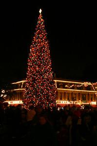 Main Street xmas tree at night.
