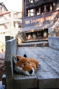 Mr Fox No.12 evaluates Big Thunder Mountain