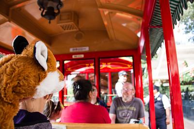 Mr Fox No.12 rides the train