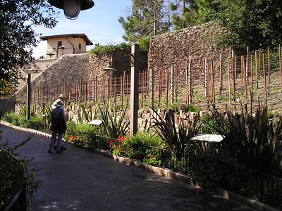 vineyard, Paul and Linda read signs