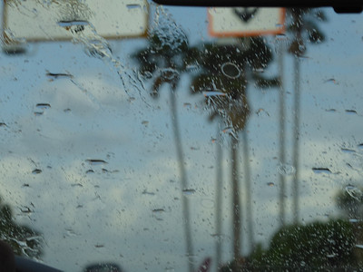 Welcome to Florida: Rain!