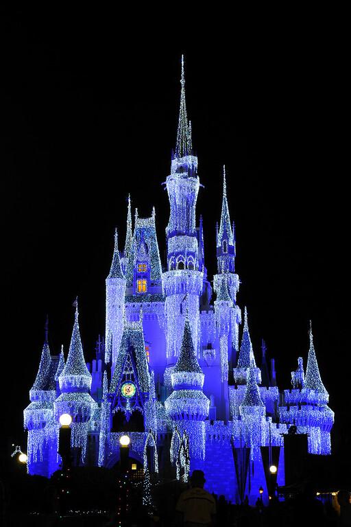Disney Night Photos 2010