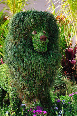 Topiary Lion at the Flower and Garden Festival