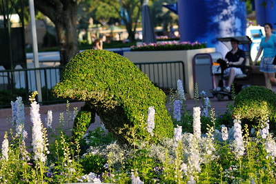Topiary at the Flower and Garden Festival