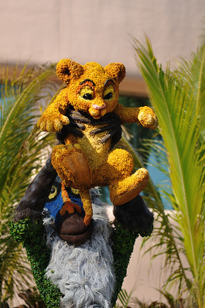 Topiary Lion King at the Flower and Garden Festival