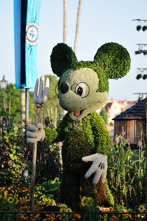 Topiary Mickey at the Flower and Garden Festival