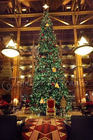 Large tree in the Wilderness Lodge lobby