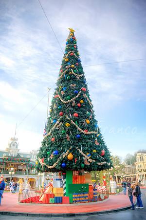 Tree at the Magic Kingdom