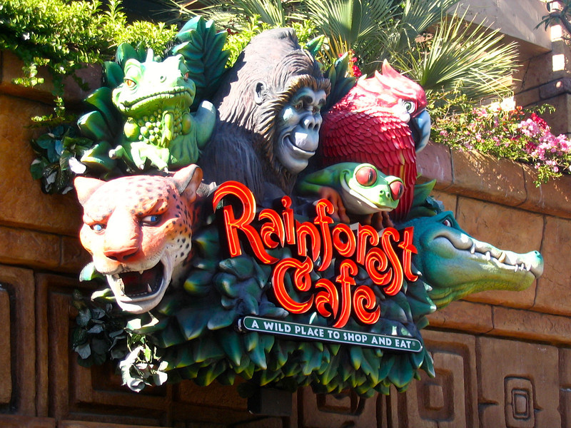 "There's the ""Rainforest Cafe""... our favorite place to eat in ""Downtown Disney"" after a great day at the parks.  Enjoying ""storms"" during your meal is definitely a unique way to eat. :-)"