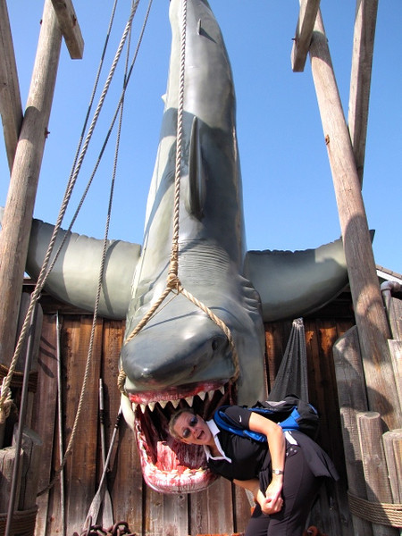That's a big shark... hopefully Nancy is somewhere safe! Ooops, doesn't look like it! :-)