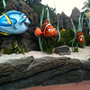 "Make sure to take ""The Seas with Nemo & Friends"" ride when at Epcot... cute! :-) And of course do all the rides like ""Test Track"", ""Mission Space"", ""Soarin"", ""Space Ship Earth"", etc."