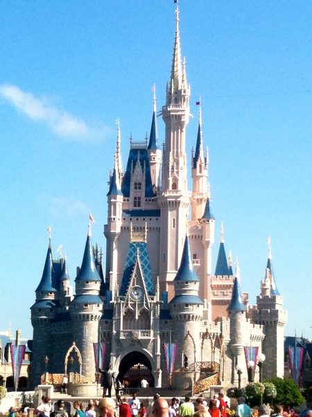 "There's ""Cinderella's Castle"" that sits in the middle of the ""Magic Kingdom""... where ""Dreams Come True!"" :-)"
