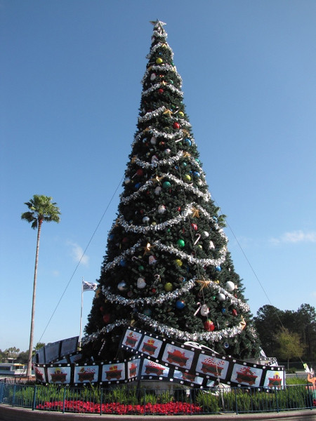 "This is our 4th time visiting Disneyworld together but out first time during Christmas... we were excited to come here during this time of year after hearing the decorations are pretty amazing... check out the size of that tree at Disney's Hollywood Studios... about twice the size of the palm tree on the left!! :-) You can read our full blog post about our time in Walt Disney World here: <a href=""http://nancyandshawnpower.com/walt-disney-world-florida-christmas-time/"">http://nancyandshawnpower.com/walt-disney-world-florida-christmas-time/</a>"