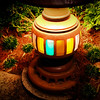 Ambiance Lamp in Animal Kingdom