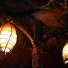 Lights in the Flight of Passage Queue