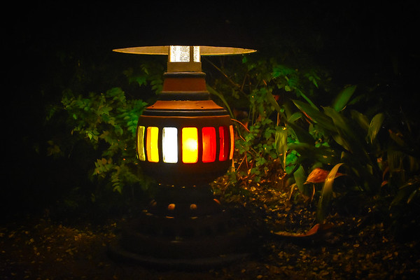 Ambiance Lamp in Animal Kingdom