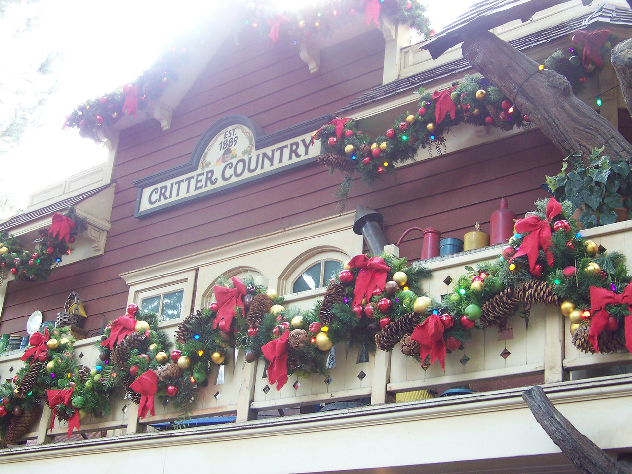 Disneyland - Critter Country