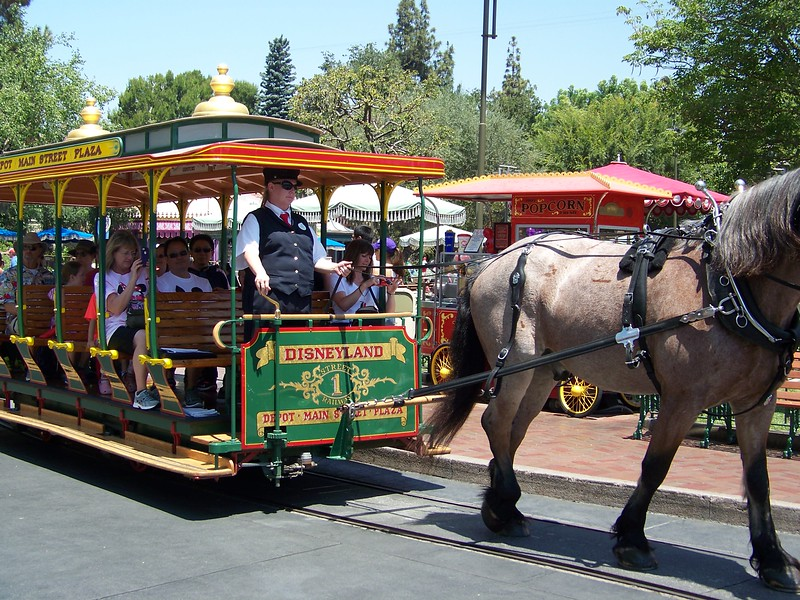 Disneyland - Horse-drawn streetcar